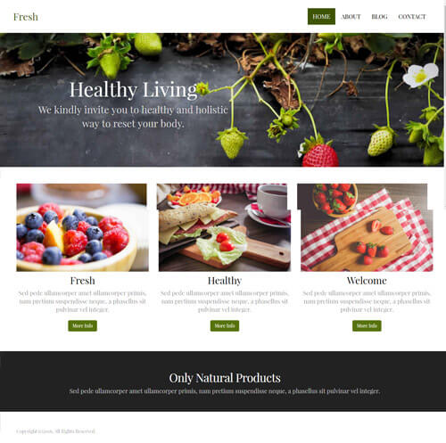 template site builder novahoster