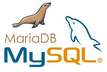 MariaDB disponible sur les hébergements web mutualisés NovaHoster